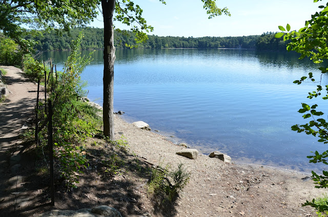 walden pond thesis The ponds thoreau describes walden pond with great detail, providing information from years after he left the pond, and also describes flint's pond and white pond.