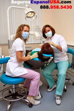 Aplicar Seguro Dental Económico Chowchila Ca