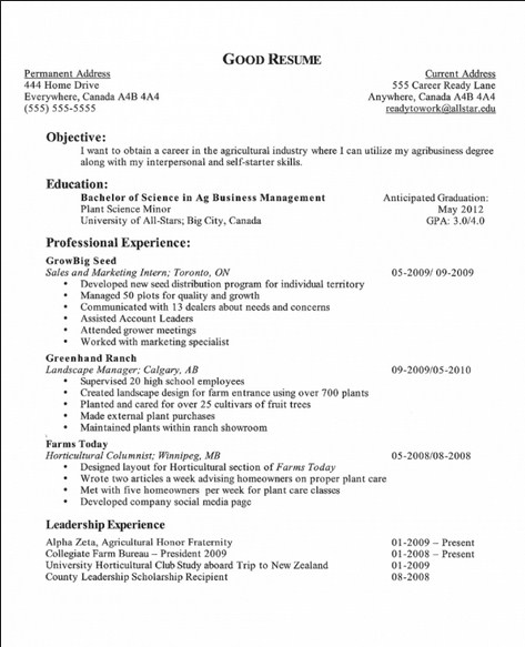 Examples Good Resume Objectives] Examples Resumes Qualifications