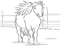 Gambar Kuda Pacuan Berlatih Dipeternakan