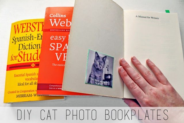 http://2.bp.blogspot.com/-N4naxFUl6-8/U8xMcEhrScI/AAAAAAAAVRg/tgBj5qNWmS8/s1600/cat+bookplates.jpg