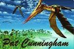 Pat Cunningham