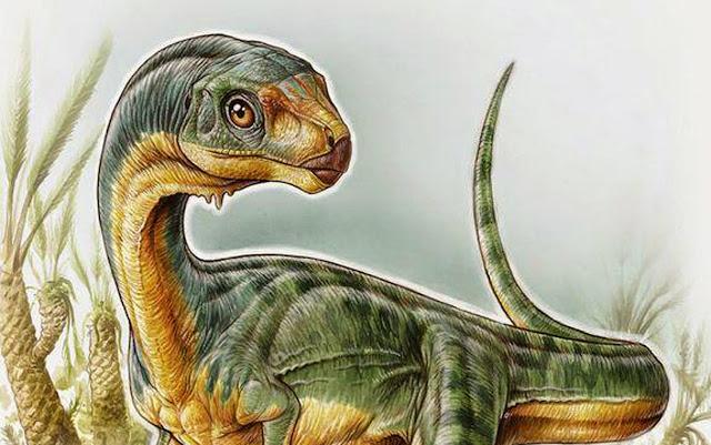 Ternyata Ada T-Rex yang Herbivora