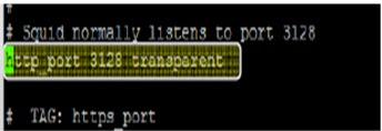 Membuat Proxy Server Menggunakan Linux Ubuntu 10.04 LTS Dan Debian 2