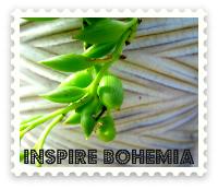 Inspire Bohemia