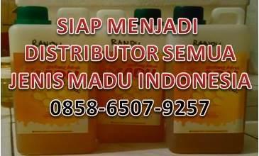 DISTRIBUTOR MADU INDONESIA 0821-4150-2649