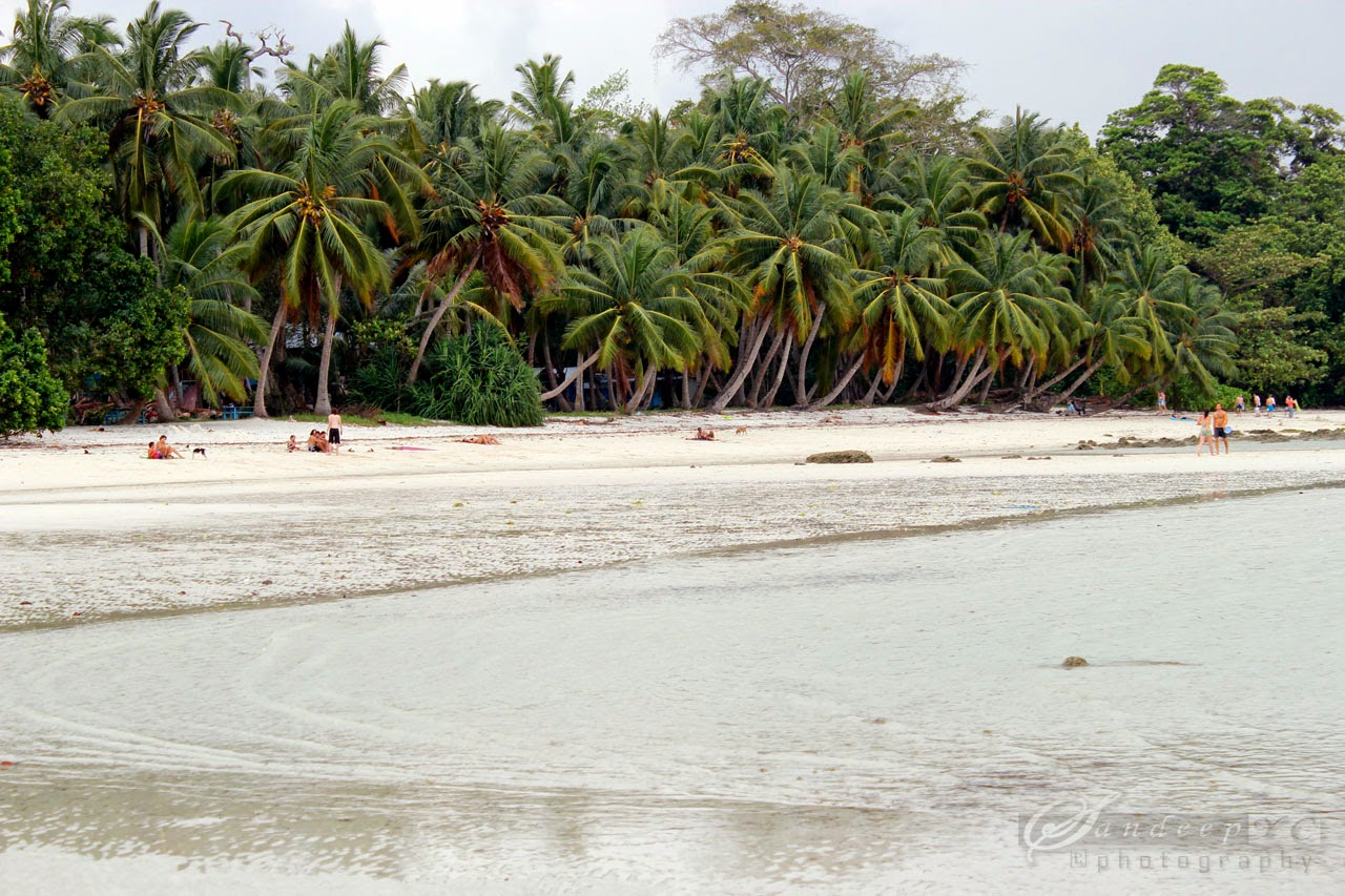 Vijayanagar Beach, Havelock island