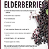 10 Health Benefits of Elderberry
