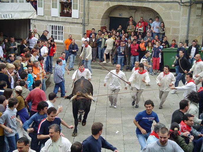 Vacaciones en allariz allariz bull festival festa do boi - Outlet en allariz ...