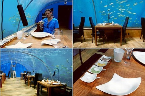 first+ever+undersea+restaurant+ithaa+3        