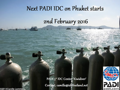 Next PADI IDC on Phuket starts 2nd February 2016