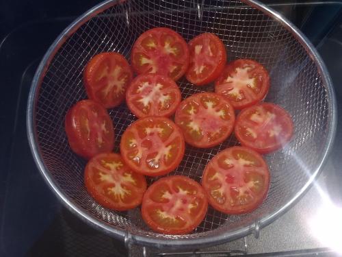 horno-solar-tomates-secos-12:16