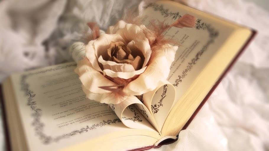 Zauberhafte Bücherwelt
