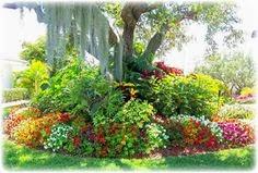 Landscaping Companies Goodyear Arizona