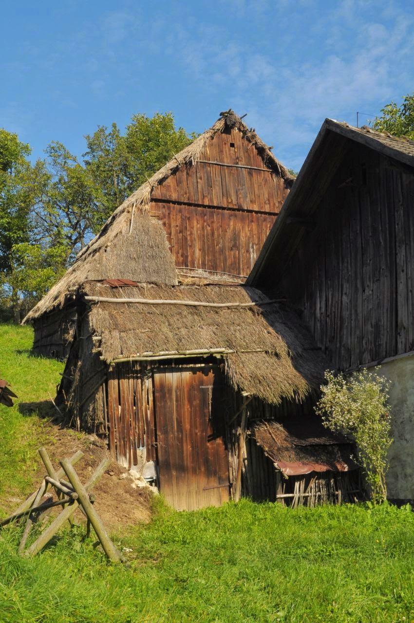 Sąspów, obrzeża - porzucona stodoła