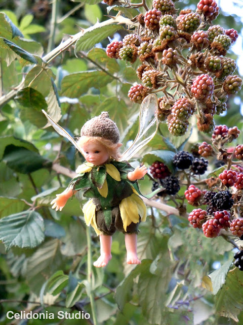 fairy near a black berry brumble