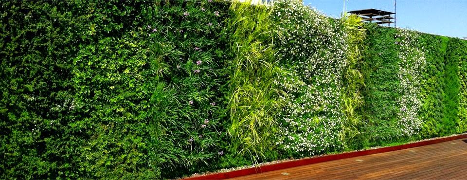 Muros de contencion bioconstrucci n de muros para mejorar Plantas para paredes verdes