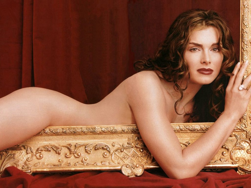 Brooke Shields Hollywoodactress