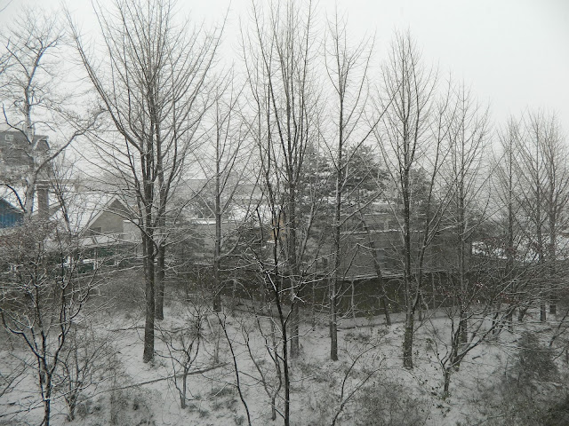 Snow fall in winter in Seoul