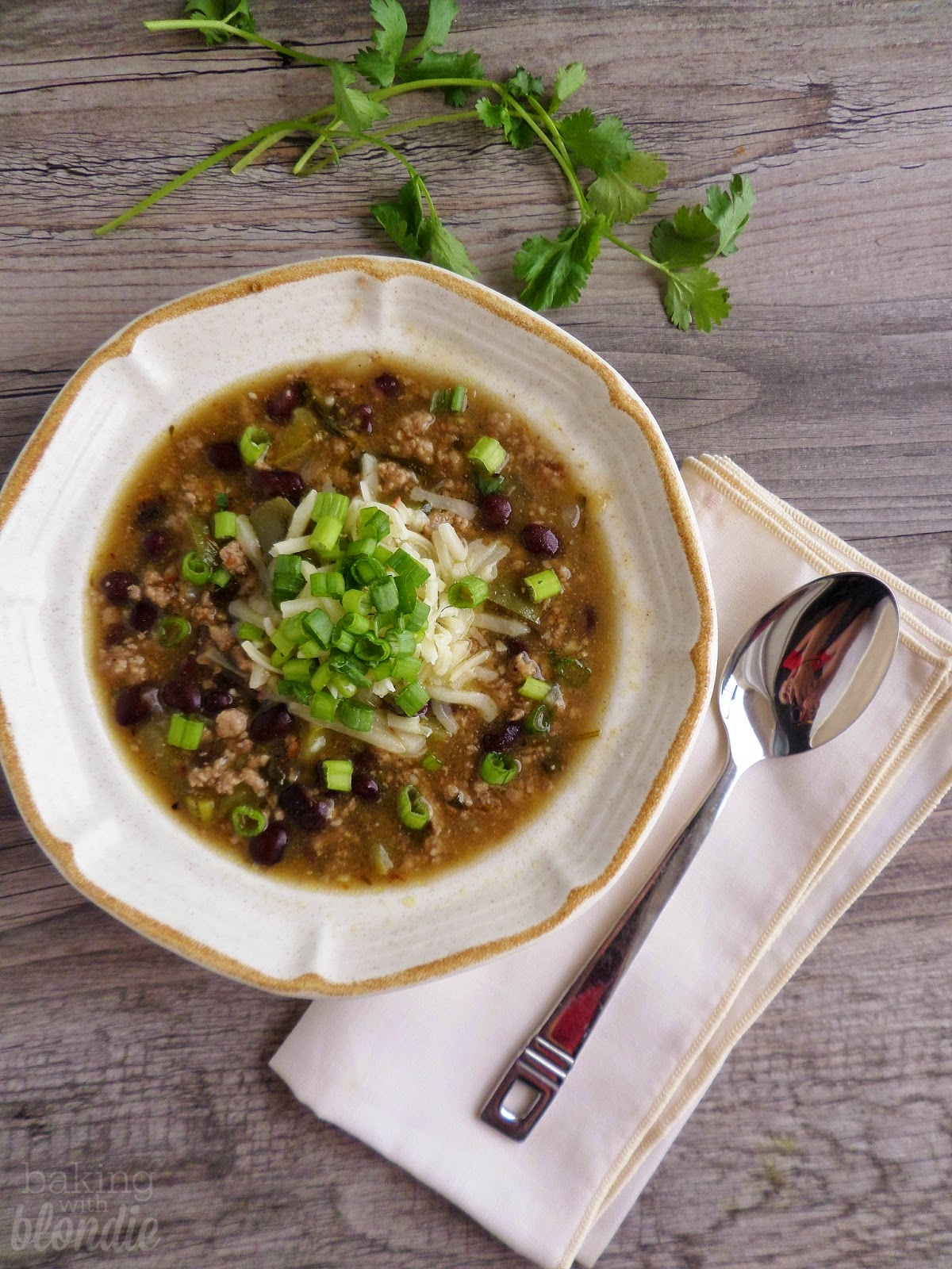 Chili Verde Soup