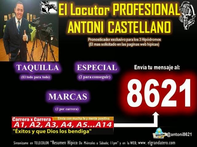 DATOS GRATIS PARA LA RINCONADA AL ESTILO DOCTOR SOTELLO, LA DE HORACIO, AMADA AMANDA, BARI JET, JUNIOR FITZ, HIGH LEVEL, ALFA QUEEN, GRAN IYAO, STARSCREMING, BLACKBERRYGOLD, GRAN CORREDORA: ASESORIA COMO: MONEY BLUE, ANY GIVEN SUNDAY, REY SALIM. CLI: 640x480