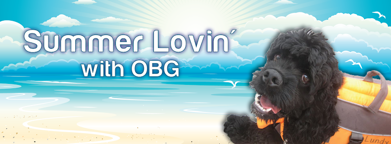 OBG Cocker Connection: The Official Blog of Oldies But Goodies Cocker Rescue