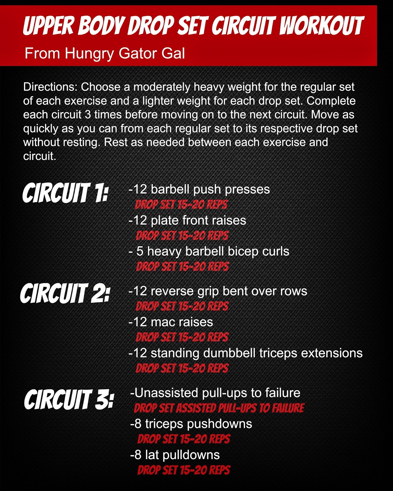 Upper Body Drop Set Circuit Workout from hungrygatorgal.com
