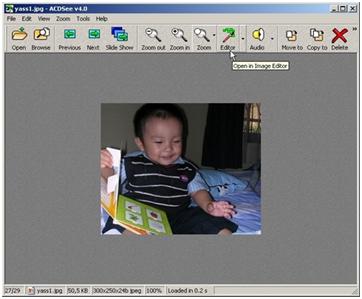Tampilan ACDSee Yang Menunjukkan Menu Editor Gambar