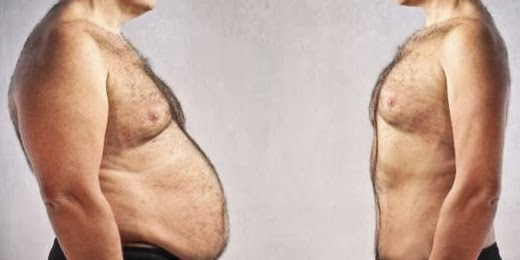 grasa-abdominal-saturada-dieta