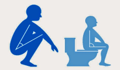 bahaya toilet duduk