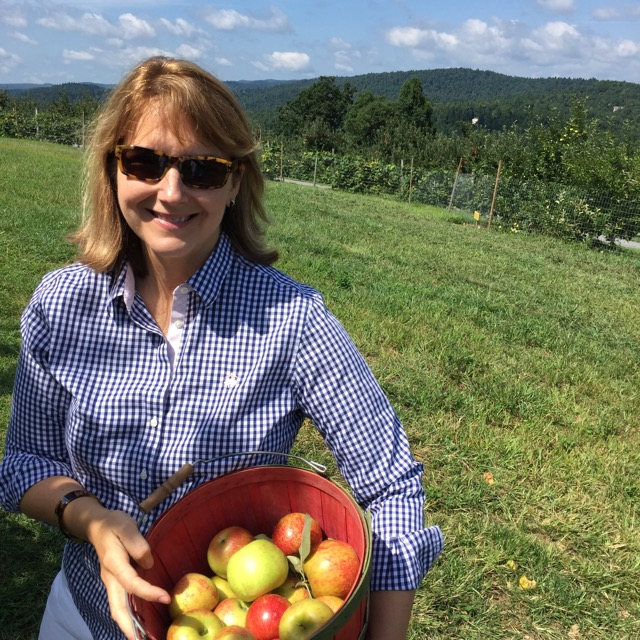 apple picking, honey crisps, apples, orchard