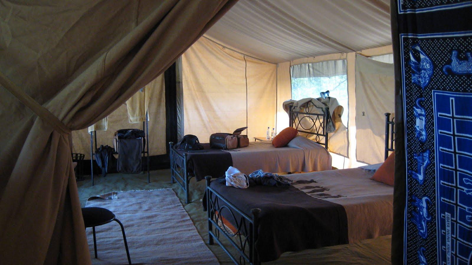 ... Kusini luxury tented c&Kleins c&Losirwa Luxury c& Migunga forest c& Kirurumu luxury tented c&sLake Manyara view lodge Tarangire safari ... & Tanzania wildlife safari destinations climbing kilimanjaro ...