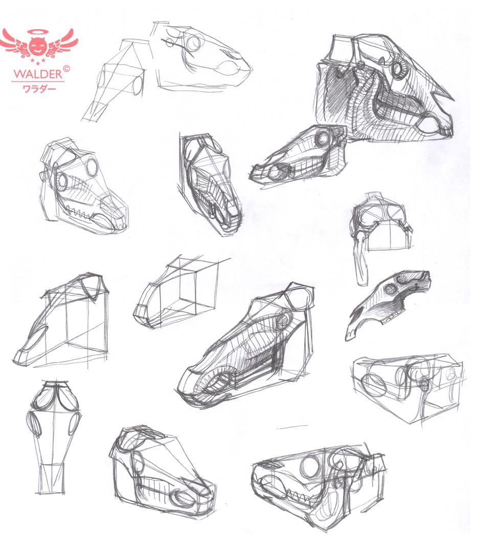 horse skull studies
