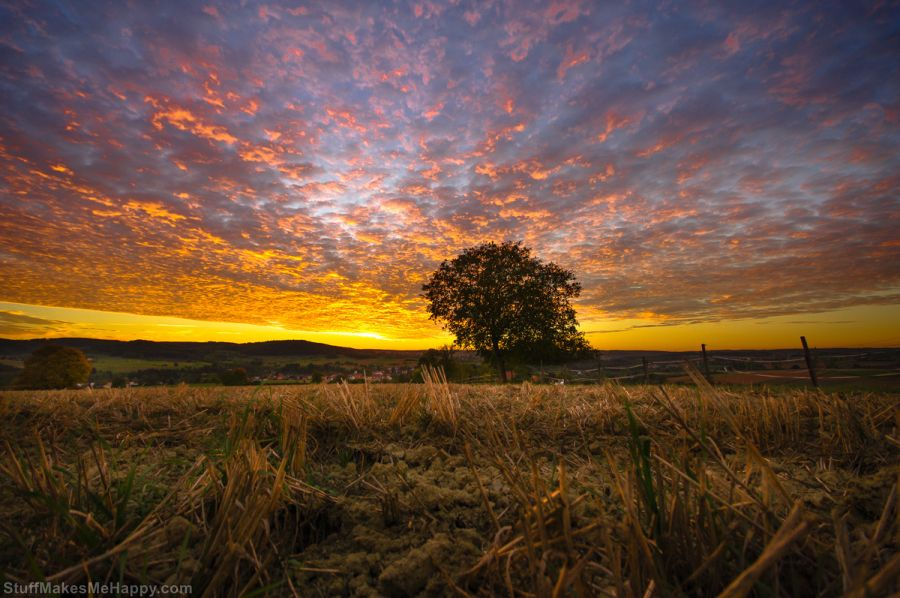 Truly Eye-catching Nature Photography by Ralf Thomas