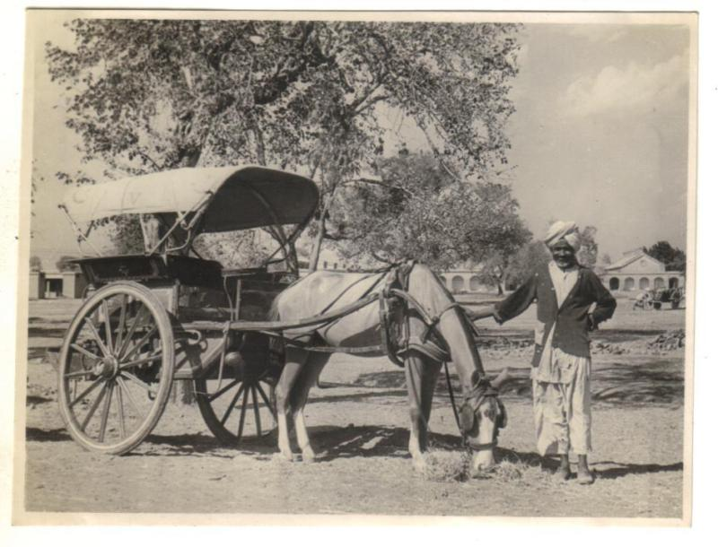 A Tonga Wallah with his Carriage - Ambala Haryana 1945