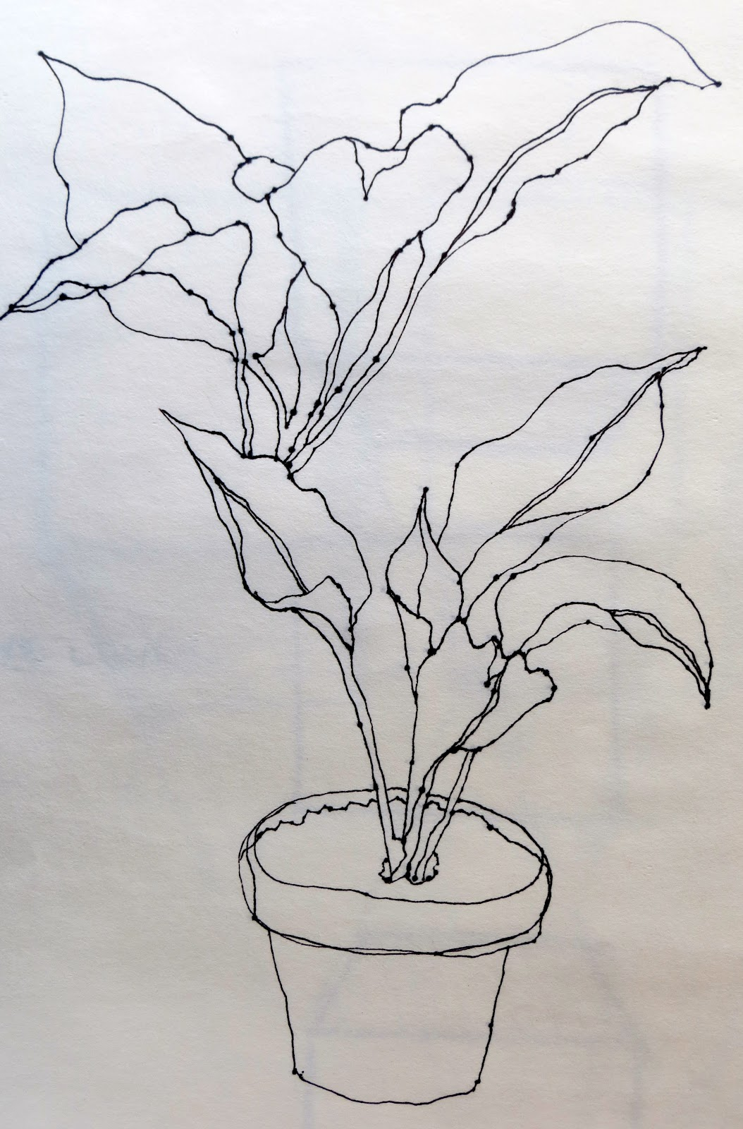 Contour Line Drawing Of A Plant : The painted prism sketchbook assignment trees leaves