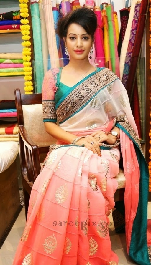 Deeksha seth sitting pose in chiffon saree