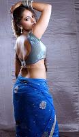 Anushka, shetty, hot, saree, navel, stills