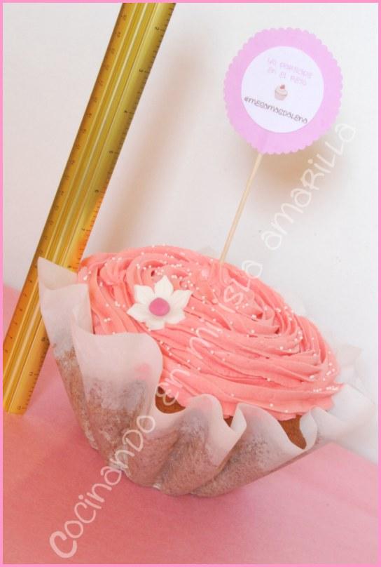 megacupcake-giant cupcake-cupcake gitante