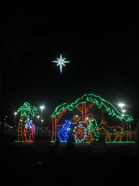Spirals Spatulas Moody Gardens Festival Of Lights
