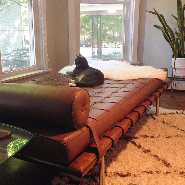 #thriftscorethursday Week 82 | Instagram user: kpick89 shows off this Barcelona Day Bed