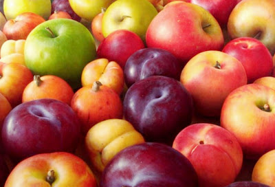 coloridas-frutas