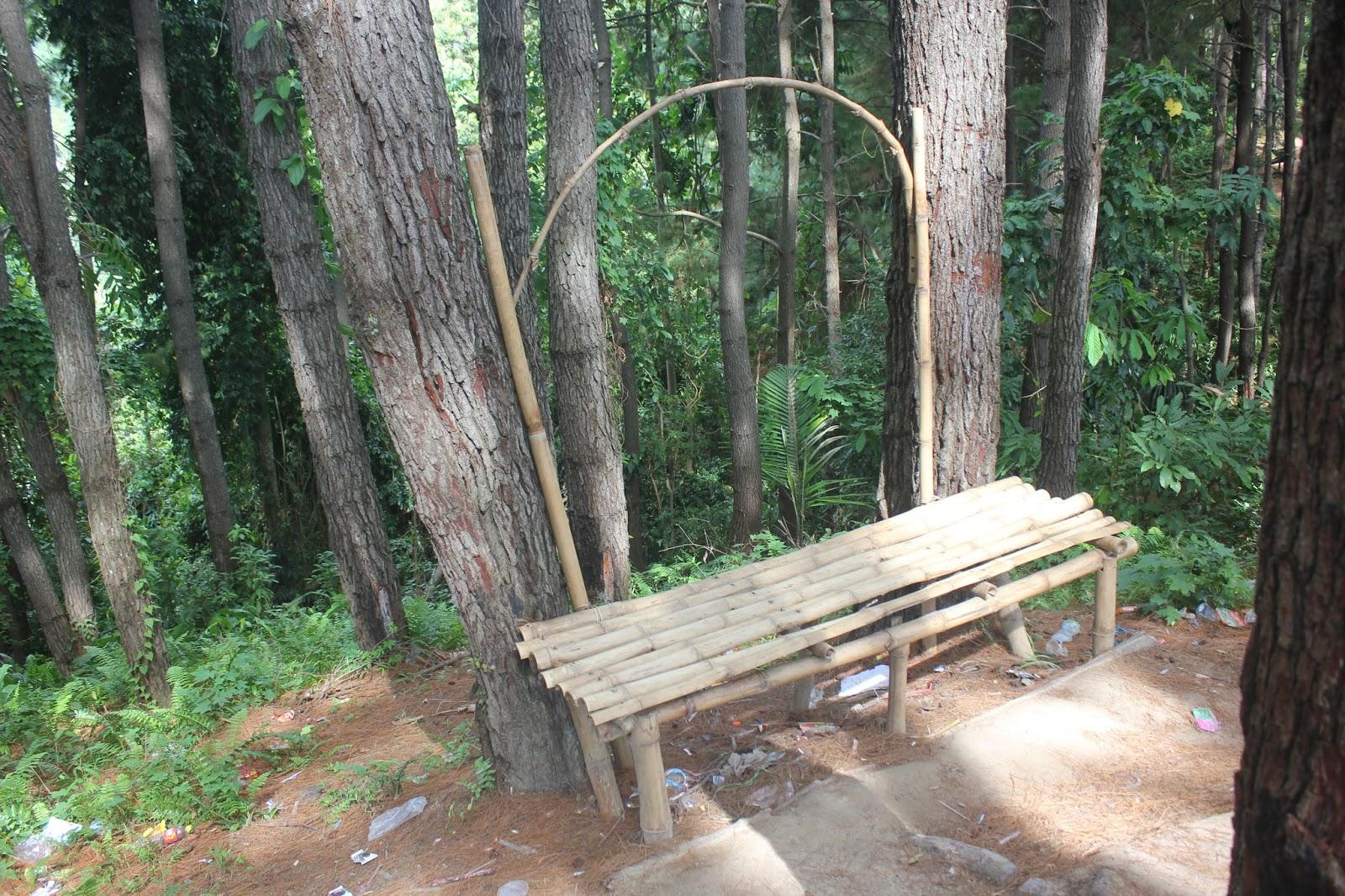 hutan polman