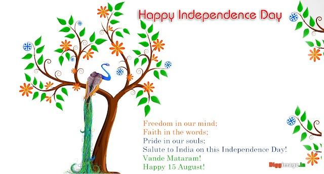 Being a proud Indian, wish you a very HaPpY InDePeNdEnCe DaY