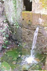 Fuente de San Fructuoso (2010)
