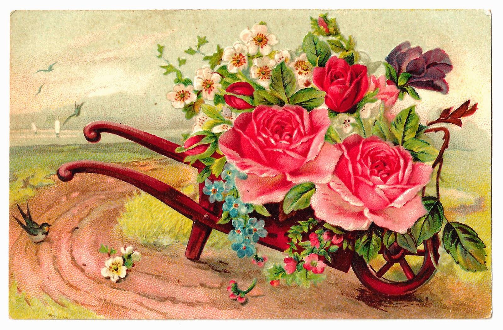 http://2.bp.blogspot.com/-NBYB_zfGqek/VMp_VdBWWuI/AAAAAAAAVX4/ZJdN1pa6ZuQ/s1600/pink_rose_pc_bouquet_wheelbarrow_orig_gm.jpg