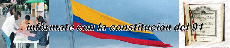 informate con la constitucion del 91