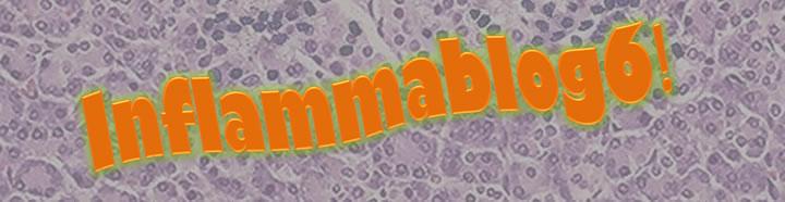 Inflammablog6!