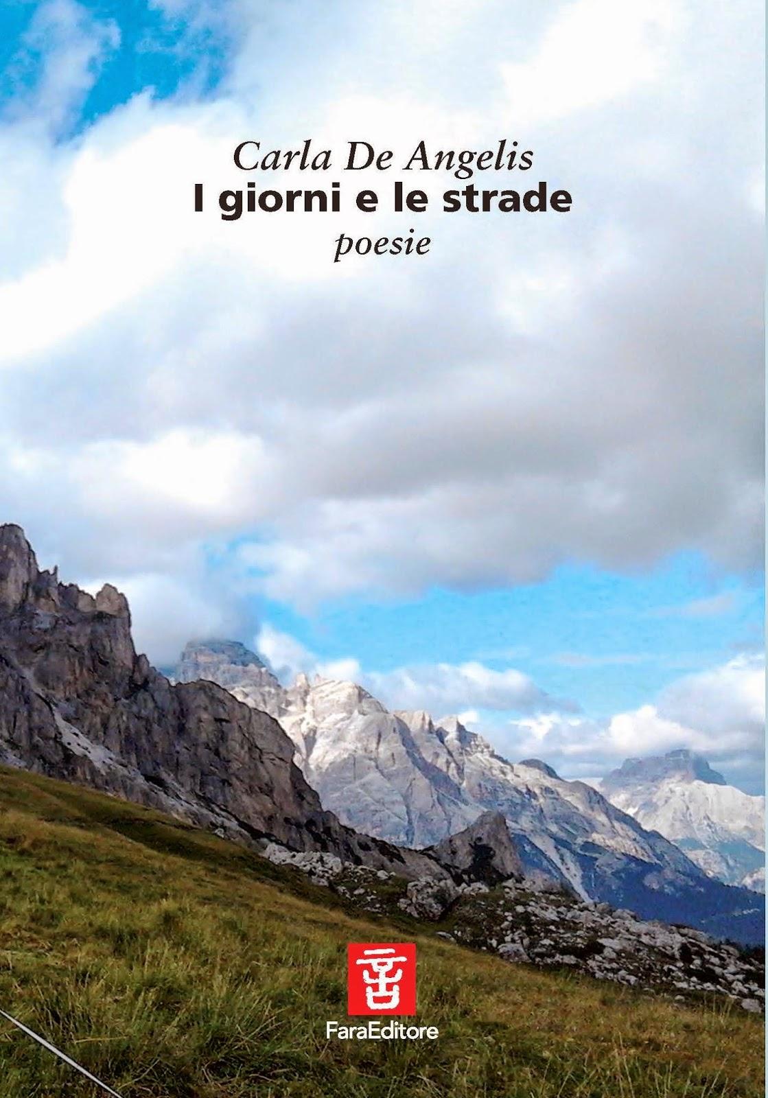 http://www.faraeditore.it/html/siacosache/giornistrade.html