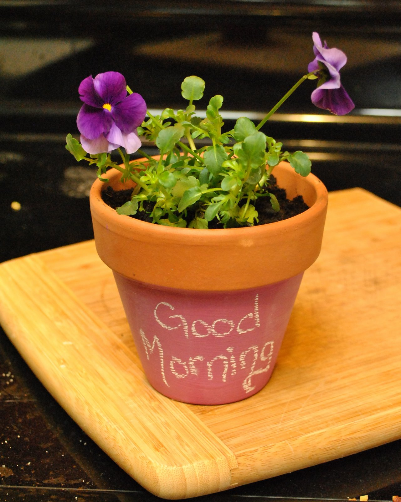 LCC Craft Gal Cheery Springtime Flower Pots